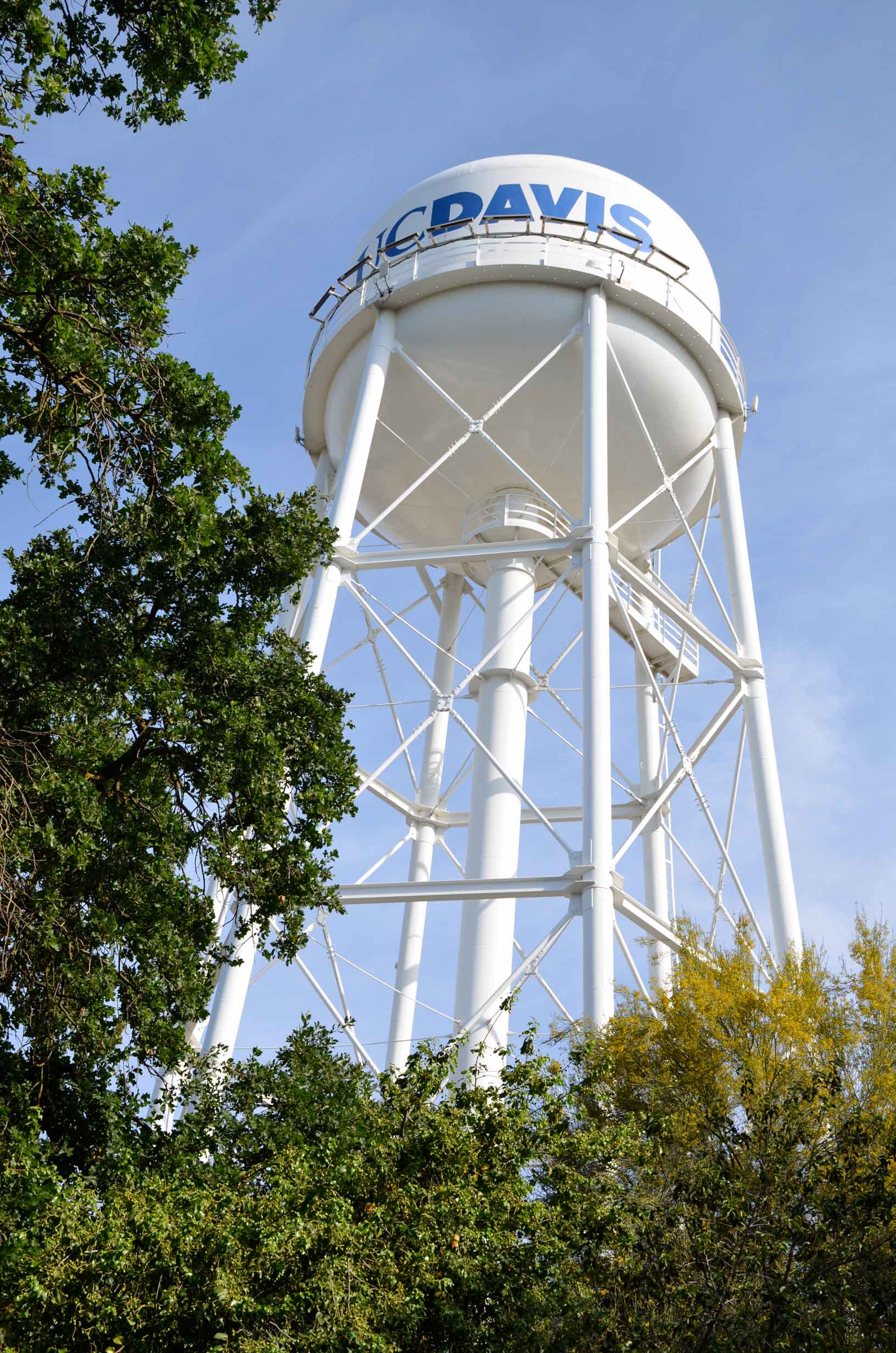 image of the UCD water tower